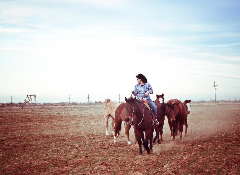 horse photography midland